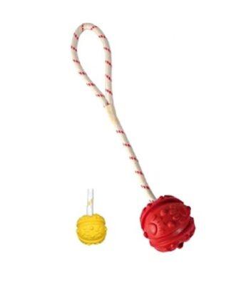 Bal aan touw drijvend